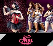 【NOAダンス教室】ベリーダンス・フラ・ハワイアン|快適スタジオで上達レッスン