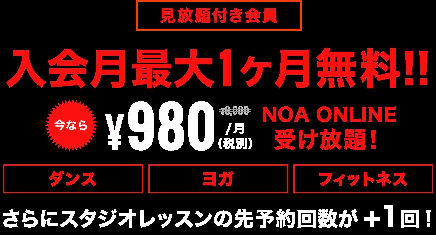 キャンペーン中¥3,000が¥980に